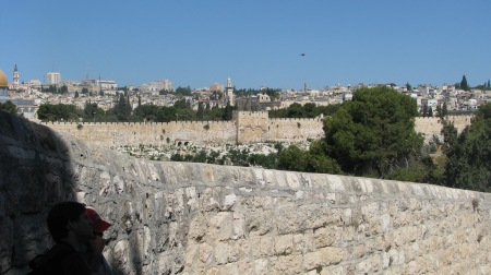 The Earthly Jerusalem, seen from the Mount of Olives. Redeemer's Gate, on the city wall that overlooks the Kidron Valley and Gethsemane, which is at the foot of the Mount of Olives, will remain sealed shut until Judgment Day.